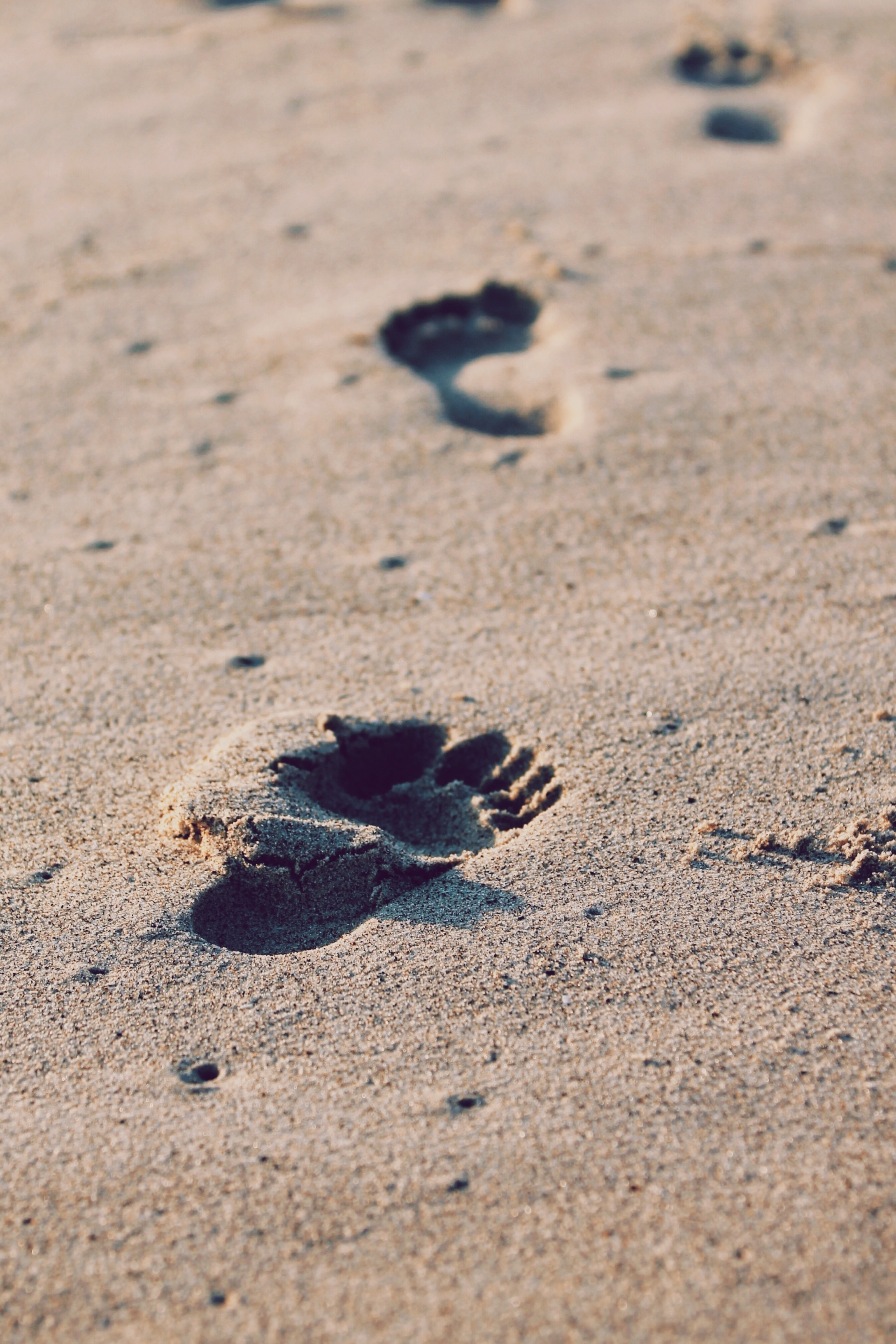 Little Footprints in the sand