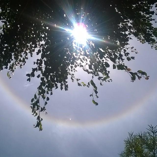 Sunny Sunday in Kikuyu